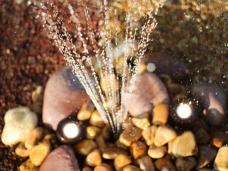Jardin aquatique jardin d'eau piscine bassin geyser fougères saint-cast-le-guildo