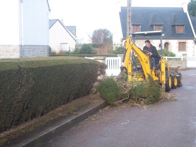 Evacuation de branchages